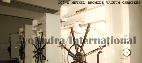 Fumigation Chamber Of Ispaghula ,Jyotindra International